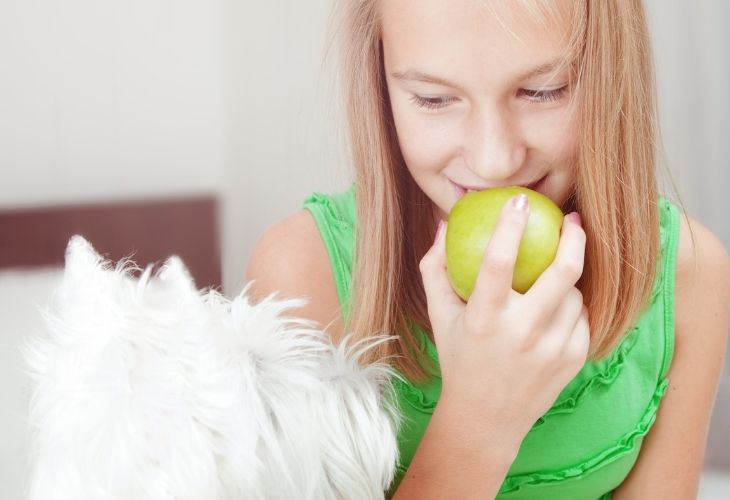 dogs eat apples